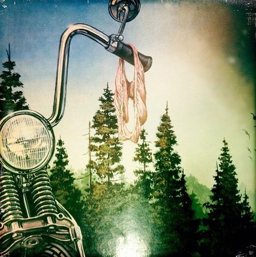 bike panties