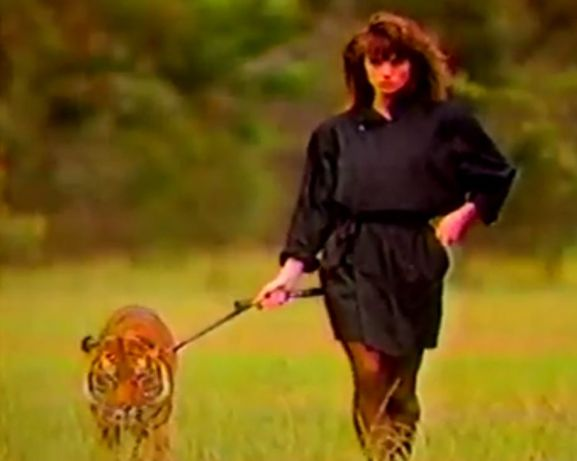 tiger lady tnuc
